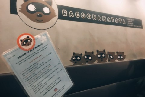 [Emma's story] Pet Café in Busan