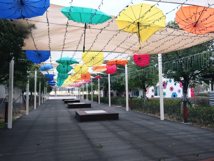 [Emma's Story] Busan Citizen's Park
