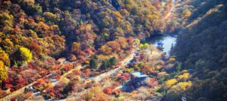 11 of Korea's best autumn hiking spots
