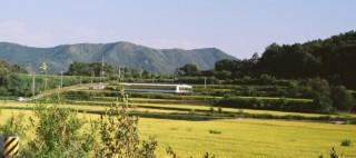 [Danny's Story] Road trip to Gyeongju, Daegu & Andong